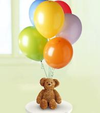 Bear & Balloon Bunch